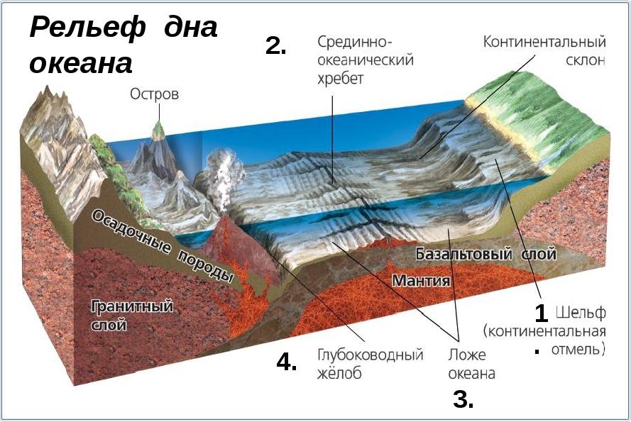 рельеф дна океана
