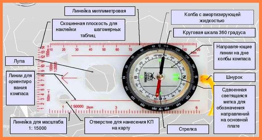 строение компаса. компас