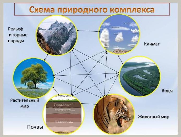 Природный комплекс