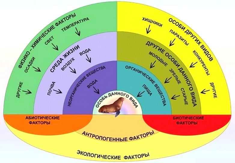 экологические факторы комплекс