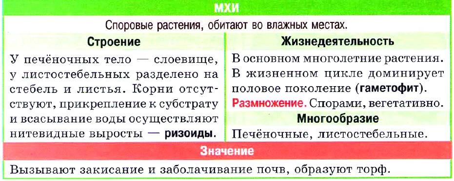 Мхи таблица