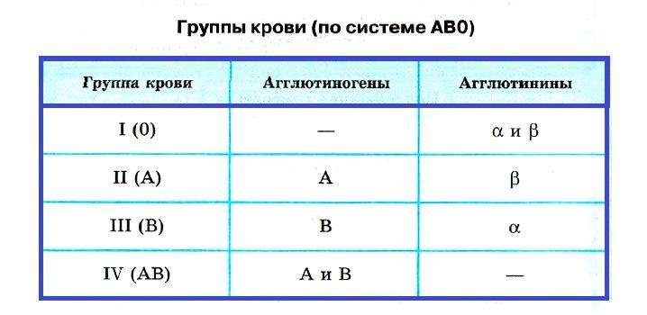 группы крови