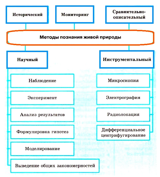Методы изучения живых объектов