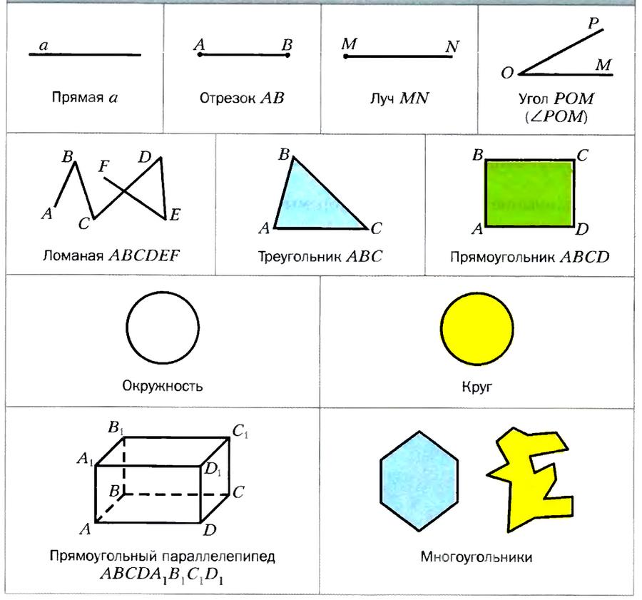 Начальные геометрические понятия