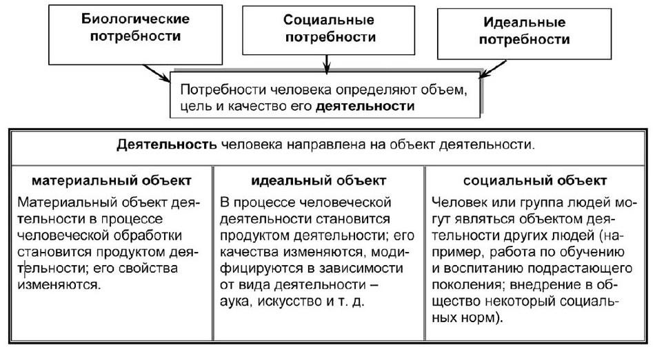 Структура протекания деятельности