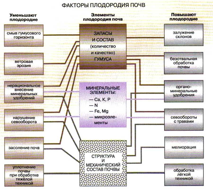 факторы плодородия почв