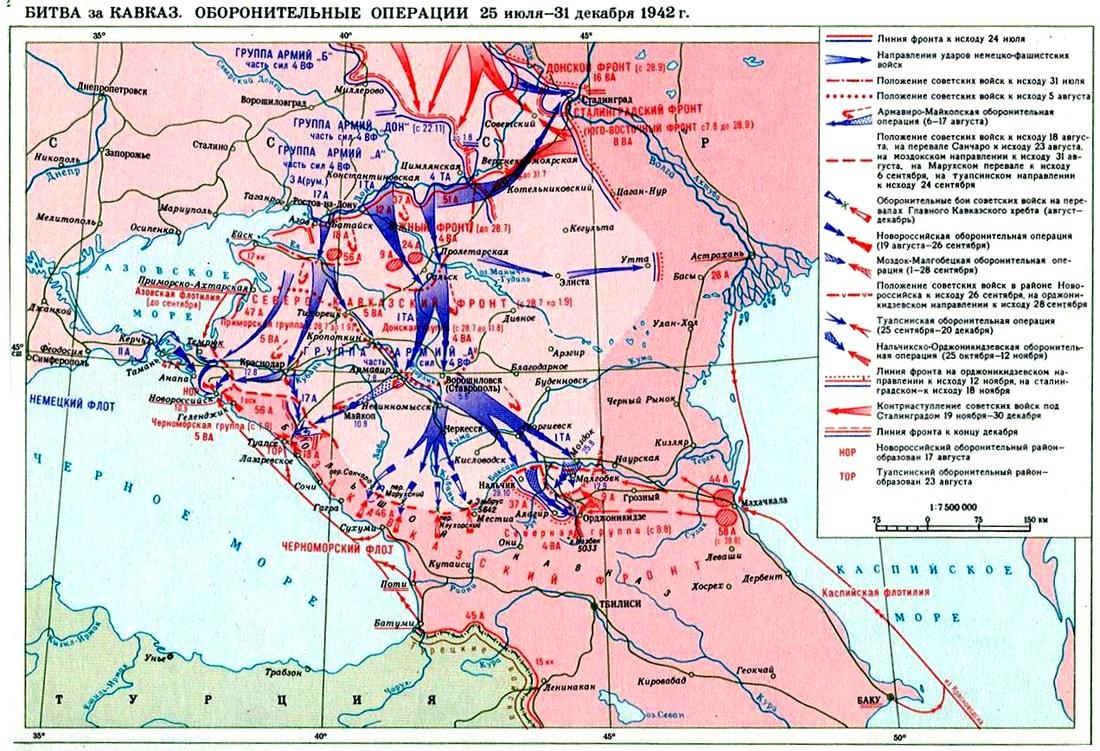 кавказская битва. оборона