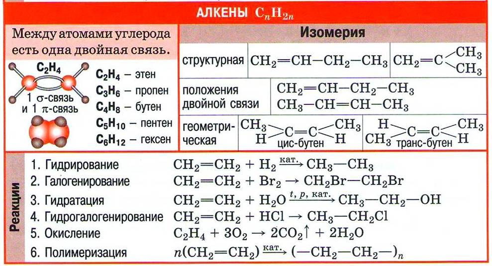 Непредельные углеводороды. Алкены
