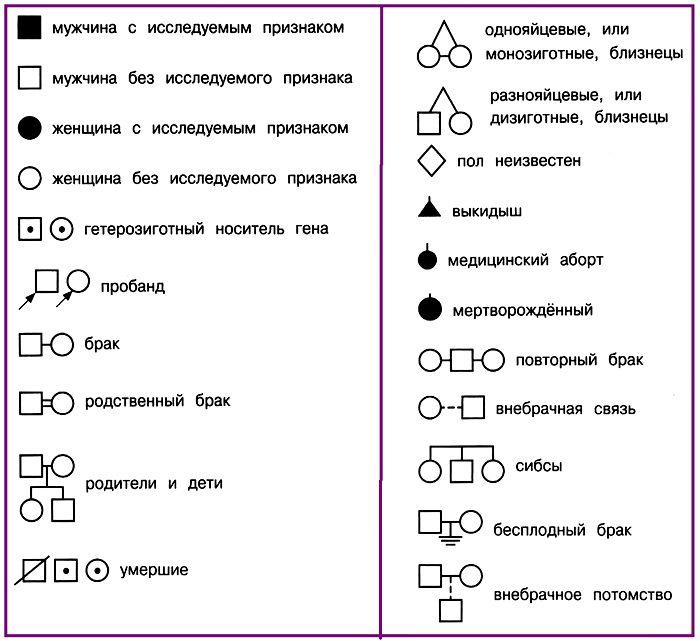 Условные обозначения, используемые при составлении родословных. УчительPRO