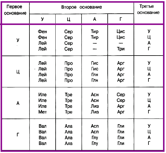 Таблица генетического кода (иРНК)