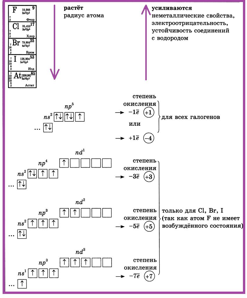 Элементы VII группы главной подгруппы (галогены)